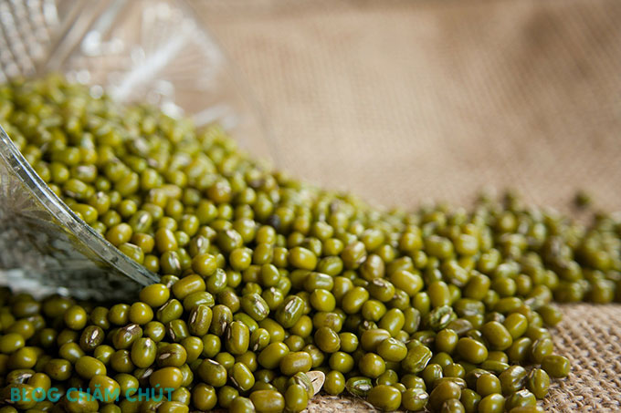 thành phần mầm đậu xanh trong bột cần tây sitokata