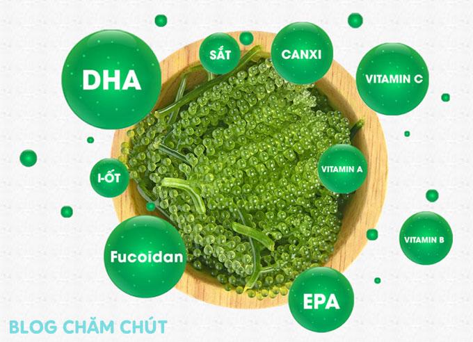thành phần dinh dưỡng của rong nho sabudo